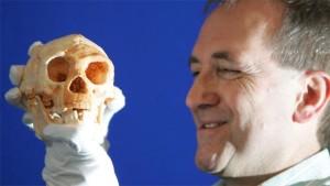 hobbit-homo-floresiensis-4