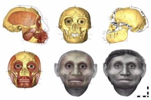 hobbit-homo-floresiensis-7