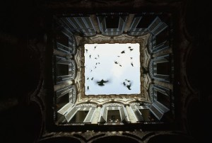Foto-inedite-del-National-Geographic-25
